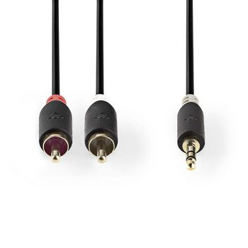 Stereo Audio Cable   3.5 mm Male - 2x RCA Male   3.0 m   Anthracite