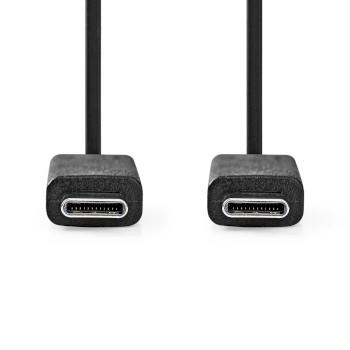 USB 3.1 Cable (Gen2) | Type-C Male - Type-C Male | 1.0 m | Black
