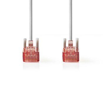 Cable de Red CAT6 UTP | Conector RJ45 (8P8C) Macho - Conector RJ45 (8P8C) Macho | 10 m | Gris